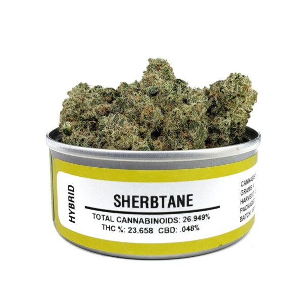 Buy Sherbtane Space Monkey Meds